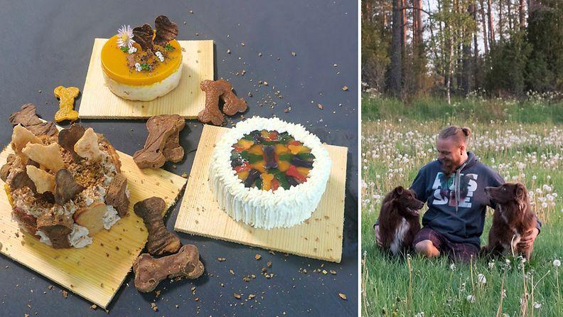 Sami koiriensa kanssa sekä Samin valmistamia kakkuja.