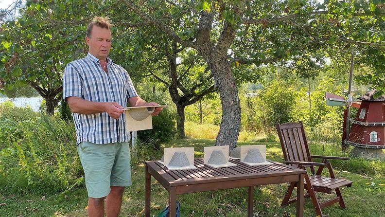 pääskyt, tekopesä, Raimo Henriksson