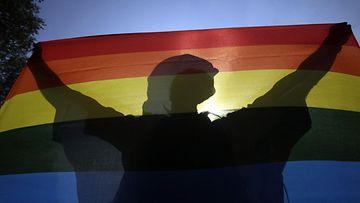 Pride lippu sateenkaari