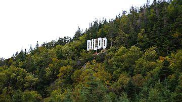 Dildon kaupunki Newfoundlandissa, Kanadassa