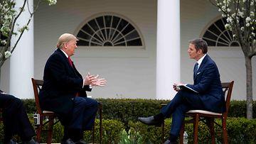 AOP Fox News Bill Hemmer Donald Trump
