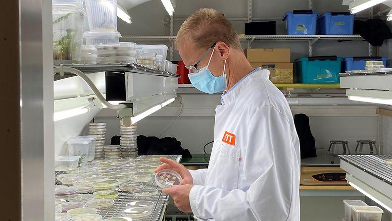 VTT, Kahvi, bioreaktori, tutkimus, soluviljelmä