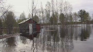 Tulva, Lappi