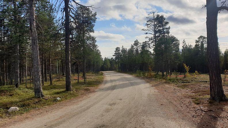 Antti Hanhivaara Angeli viimeinen havaintopaikka