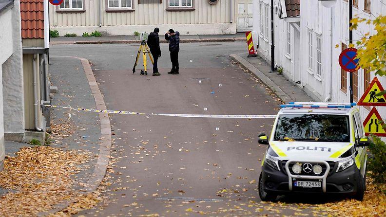 LK Norjan jousihyökkäys (2)