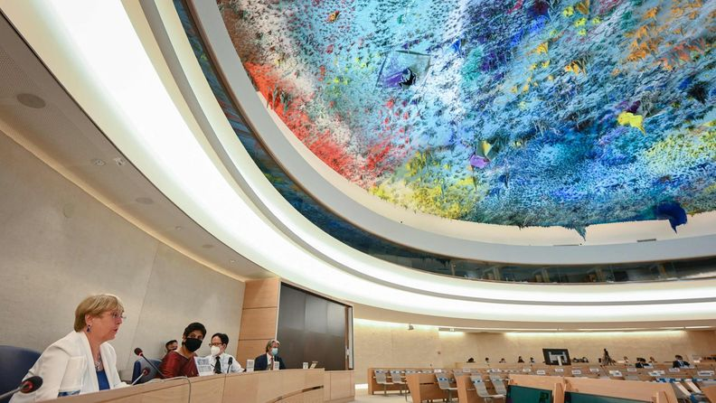 LK YK:n ihmisoikeusneuvosto