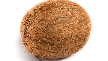 Palmusta tippuva kookospähkinä voi kiihtyä jopa 80km/t nopeuteen.