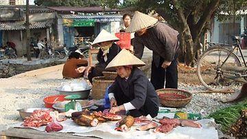 Vietnamissa on syytä olla tarkkana ruuan tuoreuden suhteen.
