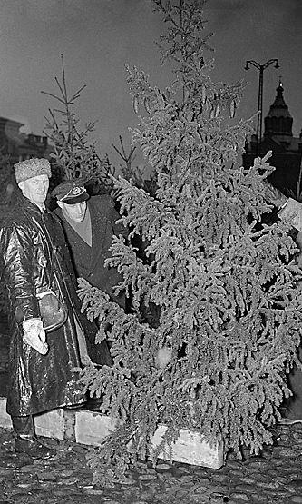 Joulukuusikauppaa Kauppatorilla 1954.